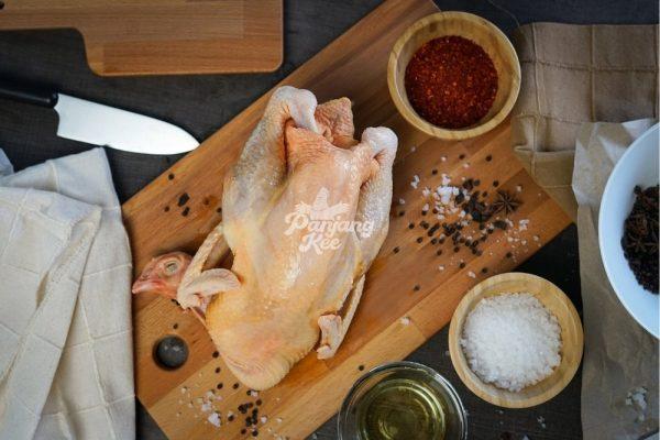 Free Range Fresh Cai Yuan Chicken Ayam Kampung Segar