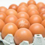Fresh Grade AA Chicken Eggs / Telur Ayam Gred AA
