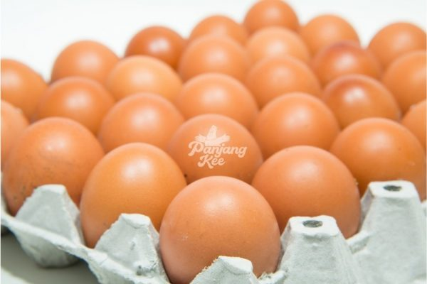 Fresh Grade AA Chicken Eggs / Telur Ayam Gred AA