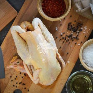 Fresh Free Range Kampung Chicken / Ayam Kampung Segar